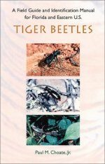 Field Guide and Identification Manual for Florida and Eastern U.S. Tiger Beetles