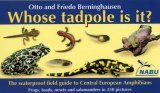 Whose Tadpole is It?