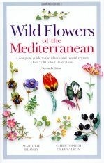 Wild Flowers of the Mediterranean