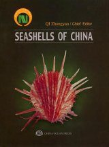 Seashells of China