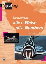 Loricariidae: Alle L-Welse/All L-numbers Image