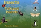 Insects of the Falkland Islands