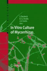 In Vitro Culture of Mycorrhizas