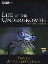 Life in the Undergrowth - DVD (Region 2 & 4)