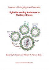 Light-Harvesting Antennas in Photosynthesis