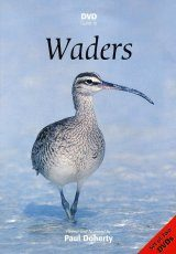DVD Guide to Waders (All Regions)
