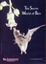 The Secret World of Bats (All Regions)