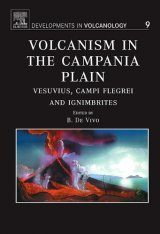 Volcanism in the Campania Plain Image