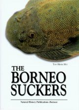 The Borneo Suckers