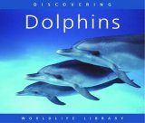 Discovering Dolphins