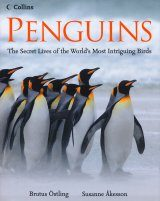 Penguins: The Secret Lives of the World's Most Intriguing Birds