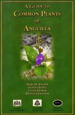 A Guide to Common Plants of Anguilla
