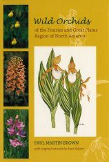 Wild Orchids of the Prairies and Great Plains Region of North America Image