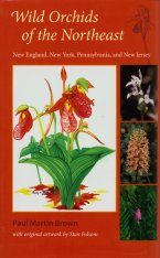 Wild Orchids of the Northeast Image