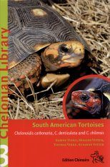 South American Tortoises Image