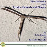 The Genitalia of the Pyrales, Deltoids & Plumes
