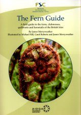 The Fern Guide
