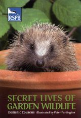 Secret Lives of Garden Wildlife