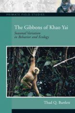 The Gibbons of Khao Yai