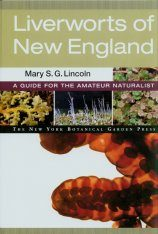 Liverworts of New England