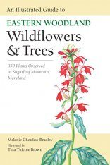 An Illustrated Guide to Eastern Woodland Wildflowers & Trees