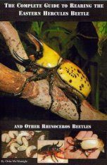 The Complete Guide to Rearing the Eastern Hercules Beetle and Other Rhinoceros Beetles