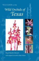 Field Guide to the Wild Orchids of Texas Image