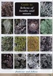 Guide to Lichens of Heaths and Moors