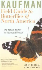 Kaufman Field Guide to the Butterflies of North America