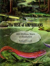 The Rise of Amphibians