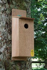 Woodpecker/Starling Nest Box