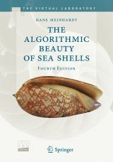 The Algorithmic Beauty of Sea Shells