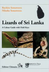 Lizards of Sri Lanka