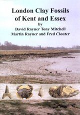 London Clay Fossils of Kent and Essex