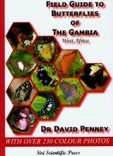 Field Guide to Butterflies of the Gambia, West Africa