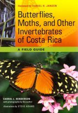 Butterflies, Moths, and Other Invertebrates of Costa Rica