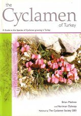 The Cyclamen of Turkey