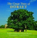 The Great Trees of Dorset