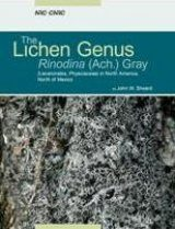 The Lichen Genus Rinodina (Lecanoromycetidae, Physciaceae) in North America, North of Mexico