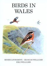Birds in Wales Image