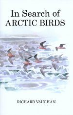 In Search of Arctic Birds