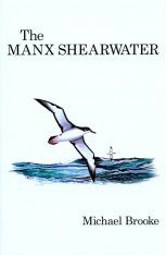 The Manx Shearwater