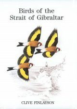 Birds of the Strait of Gibraltar
