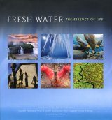 Fresh Water: The Essence of Life Image