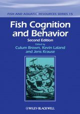 Fish Cognition and Behavior Image