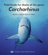 Field Guide for Sharks of the Genus Carcharhinus