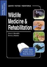 Wildlife Medicine & Rehabilitation