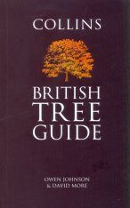 Collins British Tree Guide Image