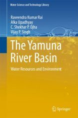 The Yamuna River Basin Image