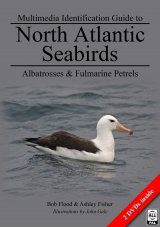 Multimedia Identification Guide to North Atlantic Seabirds: Albatrosses and Fulmarine Petrels